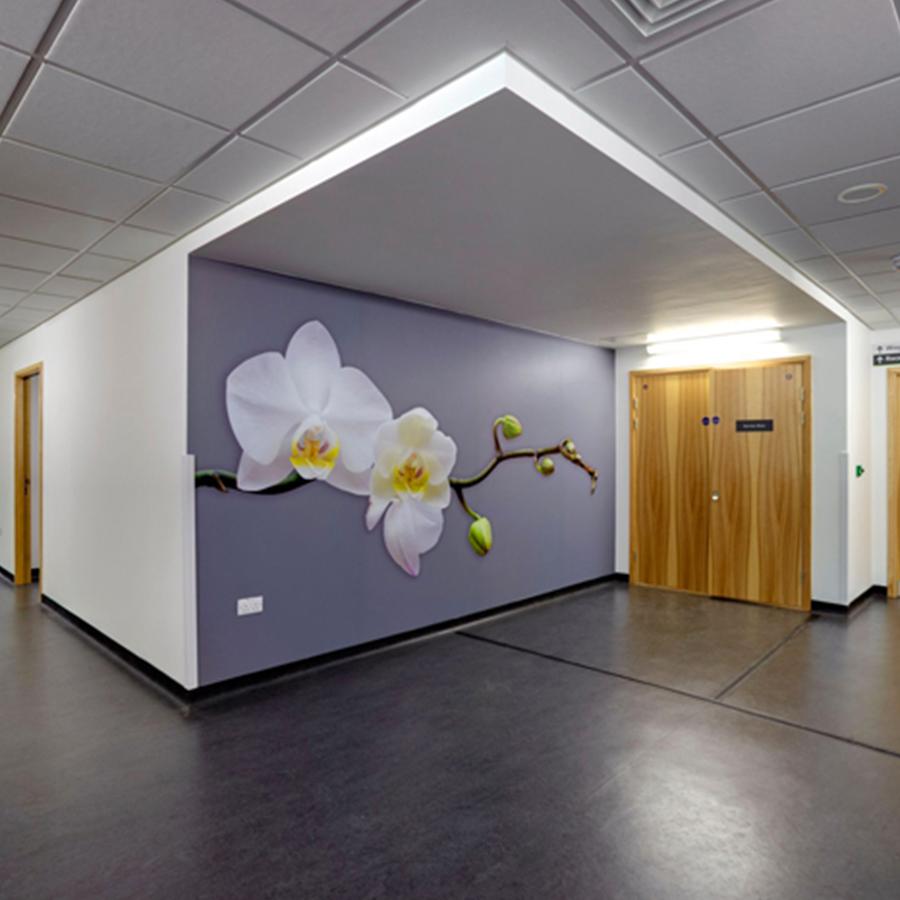 Ceilings-Image-4.jpg