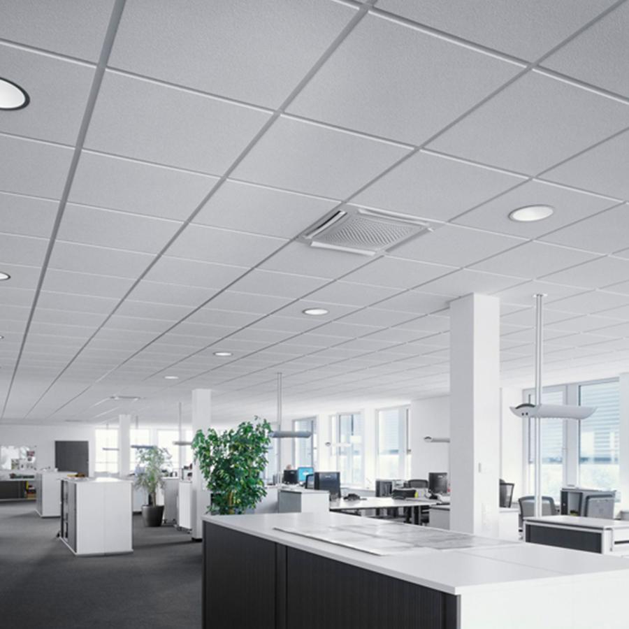 Ceilings-Image-5.jpg